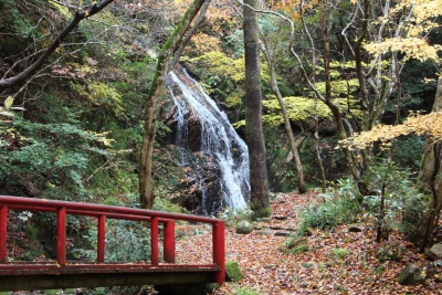 okayama camp falls.jpg