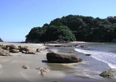 shikoku beach.png